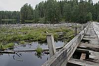 Страшненький мости и топляки в Игнойла