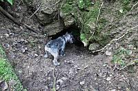Миттель проверяет пещеру