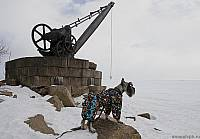 Альпен Тревел Штандарт Юнкер обозревает форт №6 Зверев